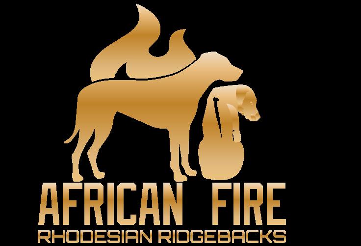 African Fire